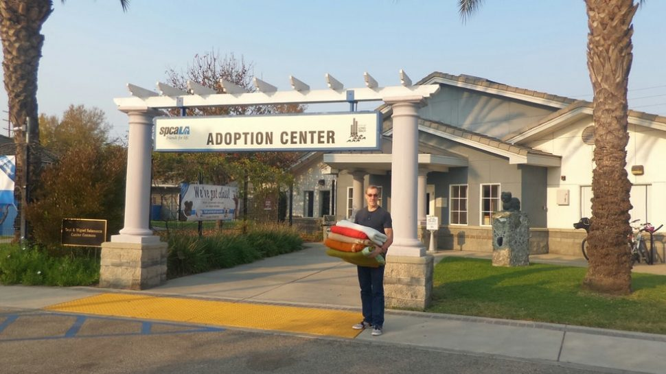 Sign between two pillars, saying Adoption Center. Blue building behind.
